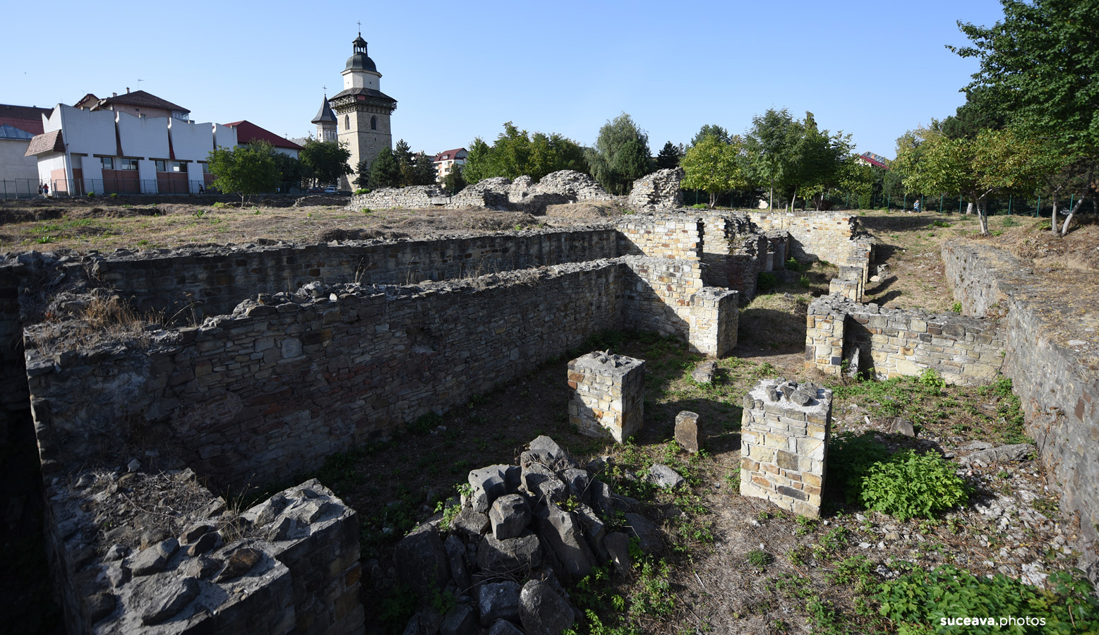 Curtea Domnească (Suceava)