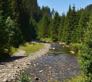 Situri Natura 2000